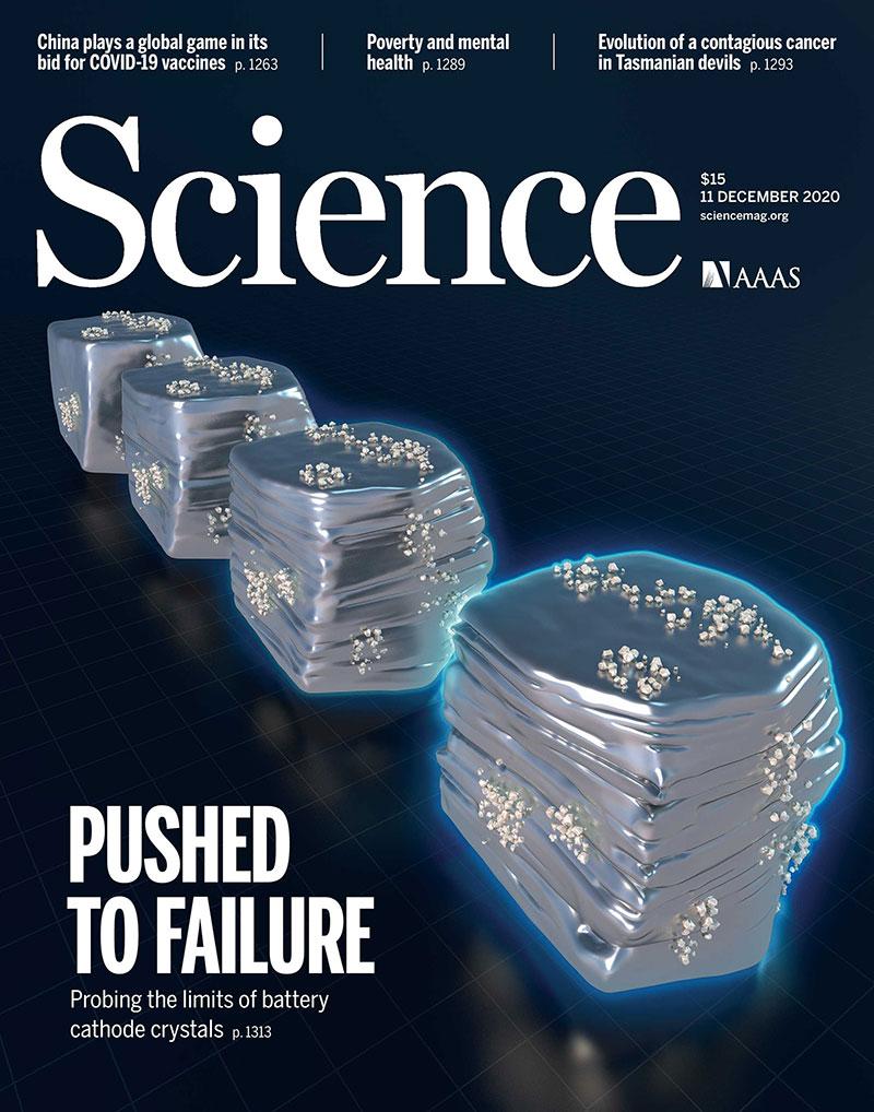 Science Magazine Digital Edition Subscription